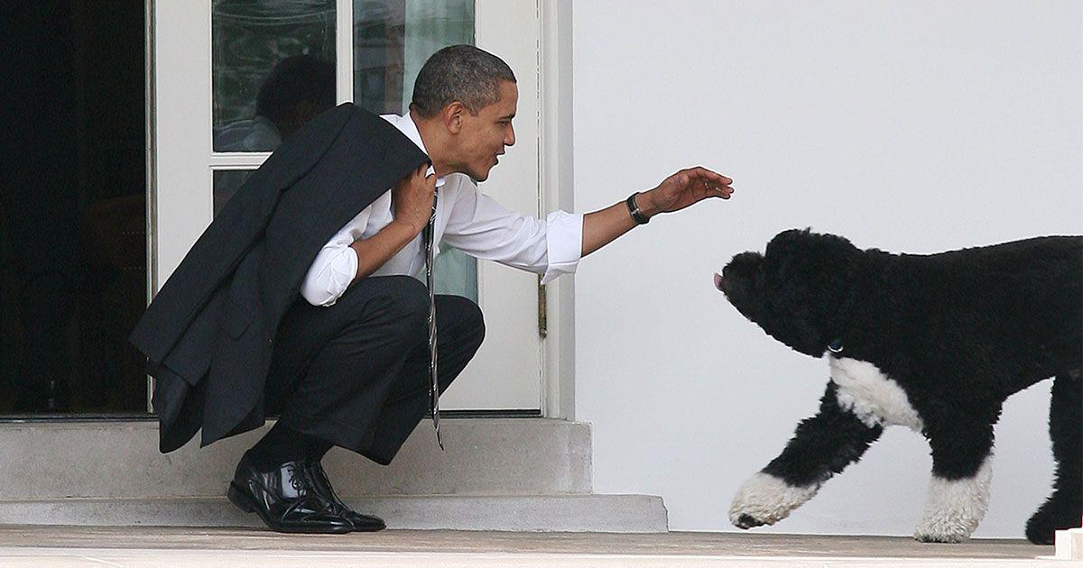 Obama sagt, dass 'jeder' etwas Nettes zu sagen hatte, als sein Hund starb